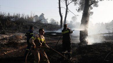 Photo of فيديو .. حريق يجتاح غابة صنوبر قرب أثينا ويدمر ما لا يقل عن 12 منزلا