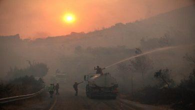 Photo of تركيا .. استمرار حرائق الغابات لليوم السابع في المناطق الساحلية