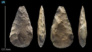 Photo of هيئة التراث تعلن اكتشاف دلائل لهجرات بشرية مبكرة من قارة أفريقيا إلى شمال الجزيرة العربية بدأت قبل 400 ألف سنة
